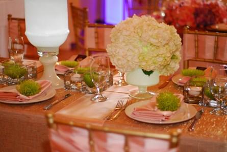 OH_wedding_faire_2015-6076