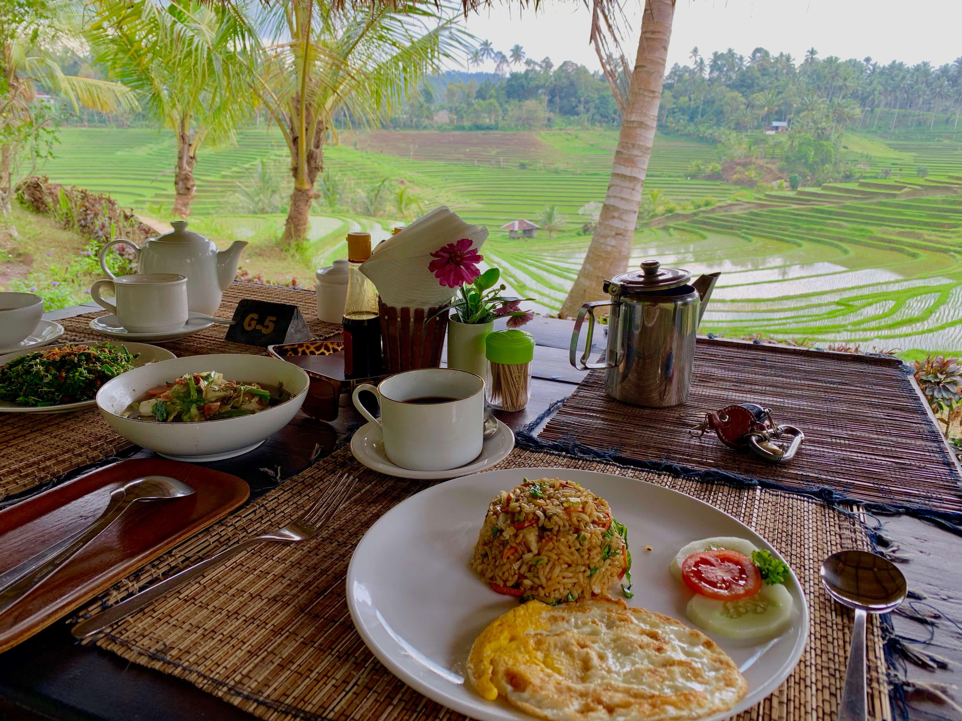 Tabanan rice fields Tegallalang Bali best tourist trap