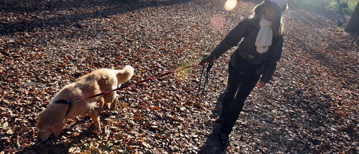 kutyát sétáltató hölgy-700