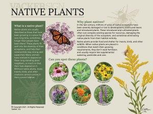 G21-2 Semi-custom Native Plants interpretive sign