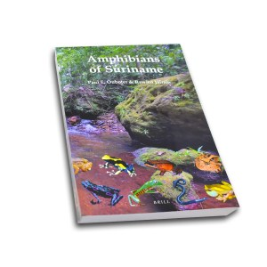 Amphibians of Suriname