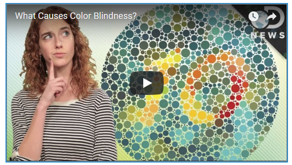 the opening screen of a youtube video on color blindness