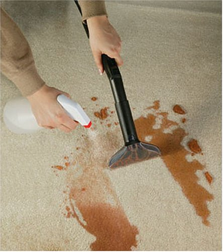 Shark CW240 Bagless Water Filtration Vacuum Cleaning the Carpets
