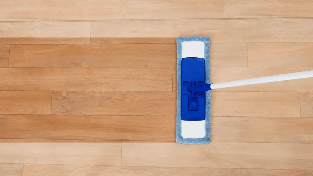 Robot Vacuums That Mop