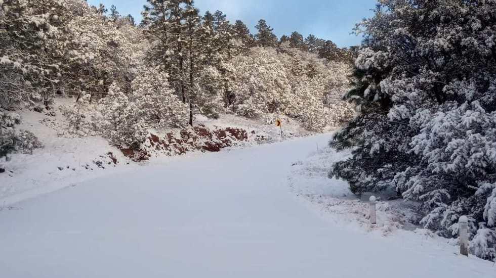 Pronostican heladas en noroeste y norte de México