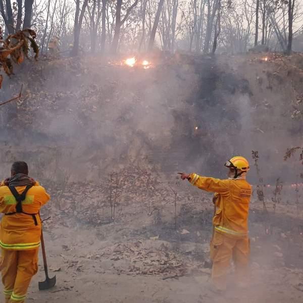 Manzanillo tendrá mayor atención para incendios forestales: Conafor