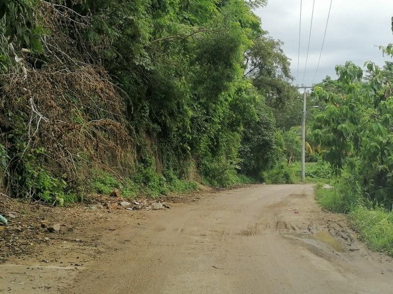 No existen derrumbes en zona cerril de Manzanillo