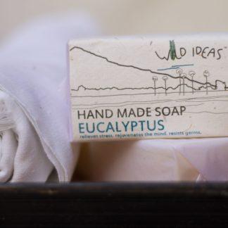 Eucalytupus Soap