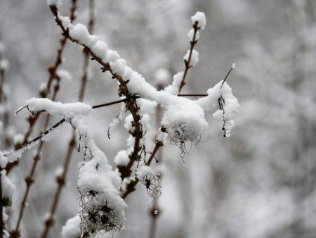 vagabondageautourdesoi-neige-wordpress-1010117