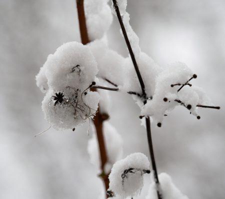 vagabondageautourdesoi-neige-wordpress-1010139