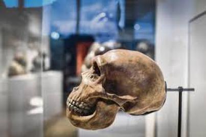vagabondageautourdesoi-neandertal-wordpress-13.jpg