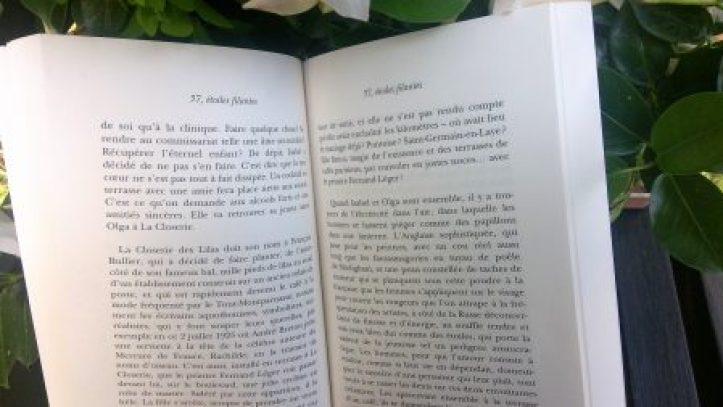 vagabondageautourdesoi-37,etoilesfilantes-wordpress-20180819 (2)