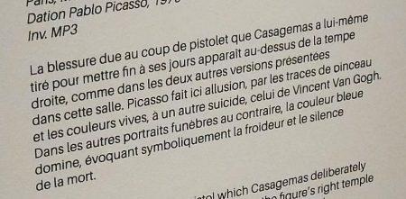 vagabondageautourdesoi-picassobleurose-wordpress-1100467
