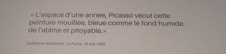 vagabondageautourdesoi-picassobleurose-wordpress-1100480