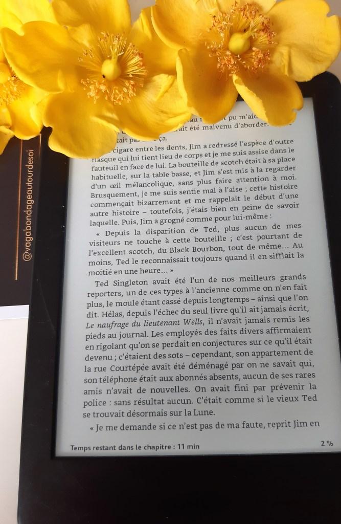 vagabondageautourdesoi.com Patrice Franceschi -