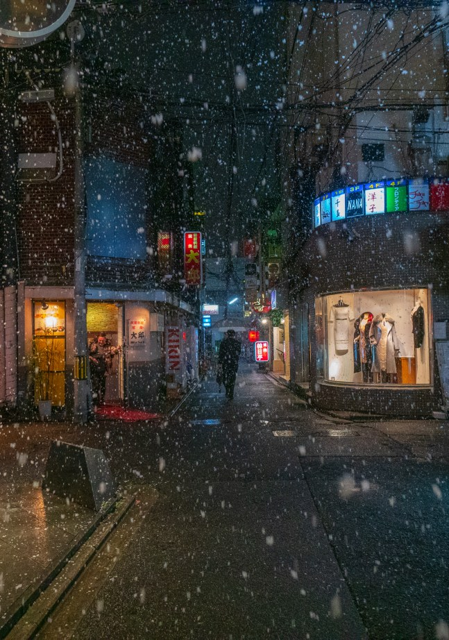 A Snowy Night in Kyoto