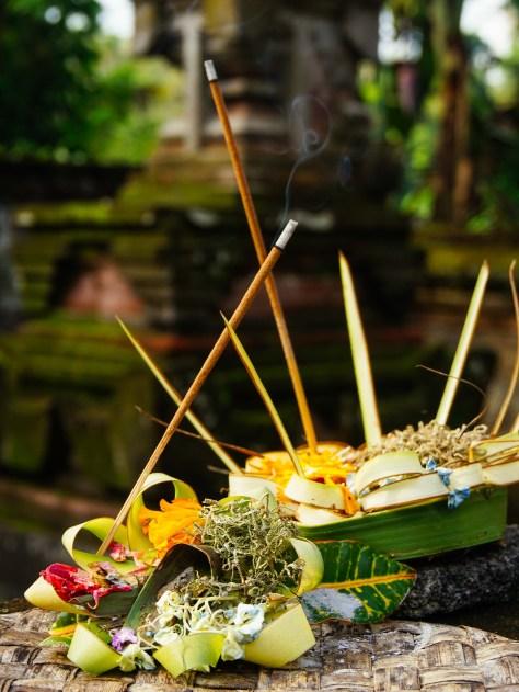 Vagabondays-Ubud-Bali-Indonesia-21