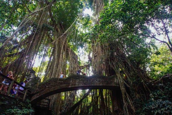 Vagabondays-Ubud-Bali-Indonesia-38