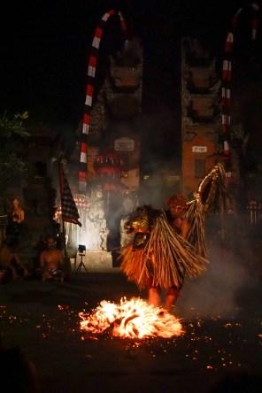 Vagabondays-Ubud-Bali-Indonesia-47