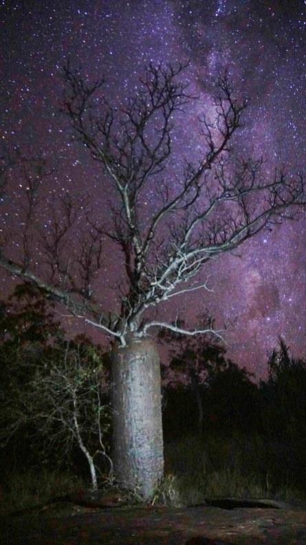vagabondays-australia-gibb-river-road-99