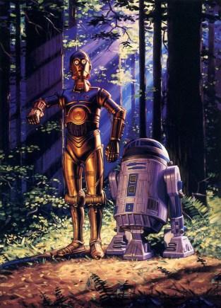 C3PO-R2D2 copy
