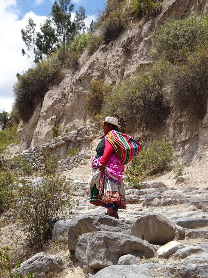 itinéraire Pérou dame canyon colca