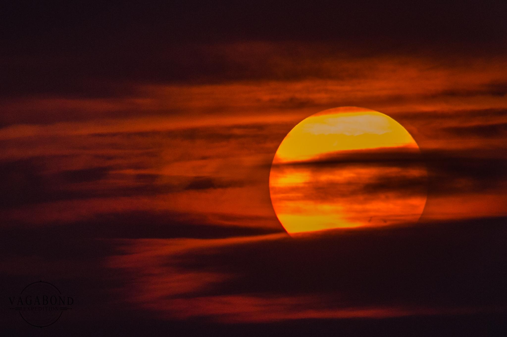 Sun Spot 2403