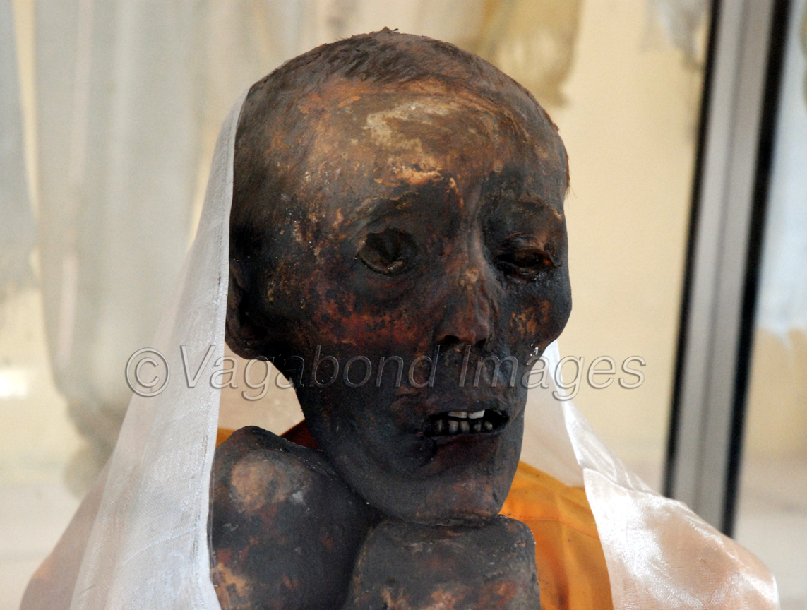 Another closer look of the mummy. Eyes are clearly visible