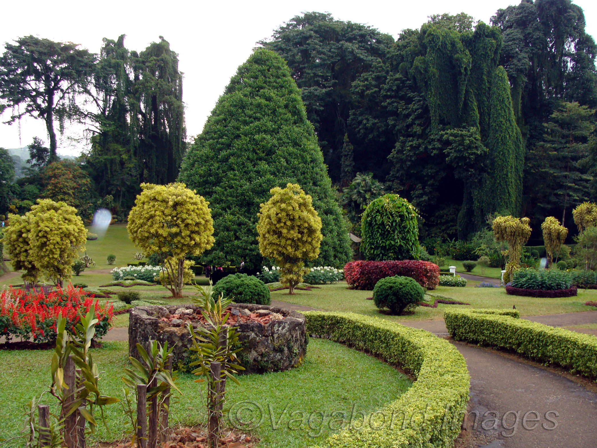 Beautiful setting with walkways and gardens
