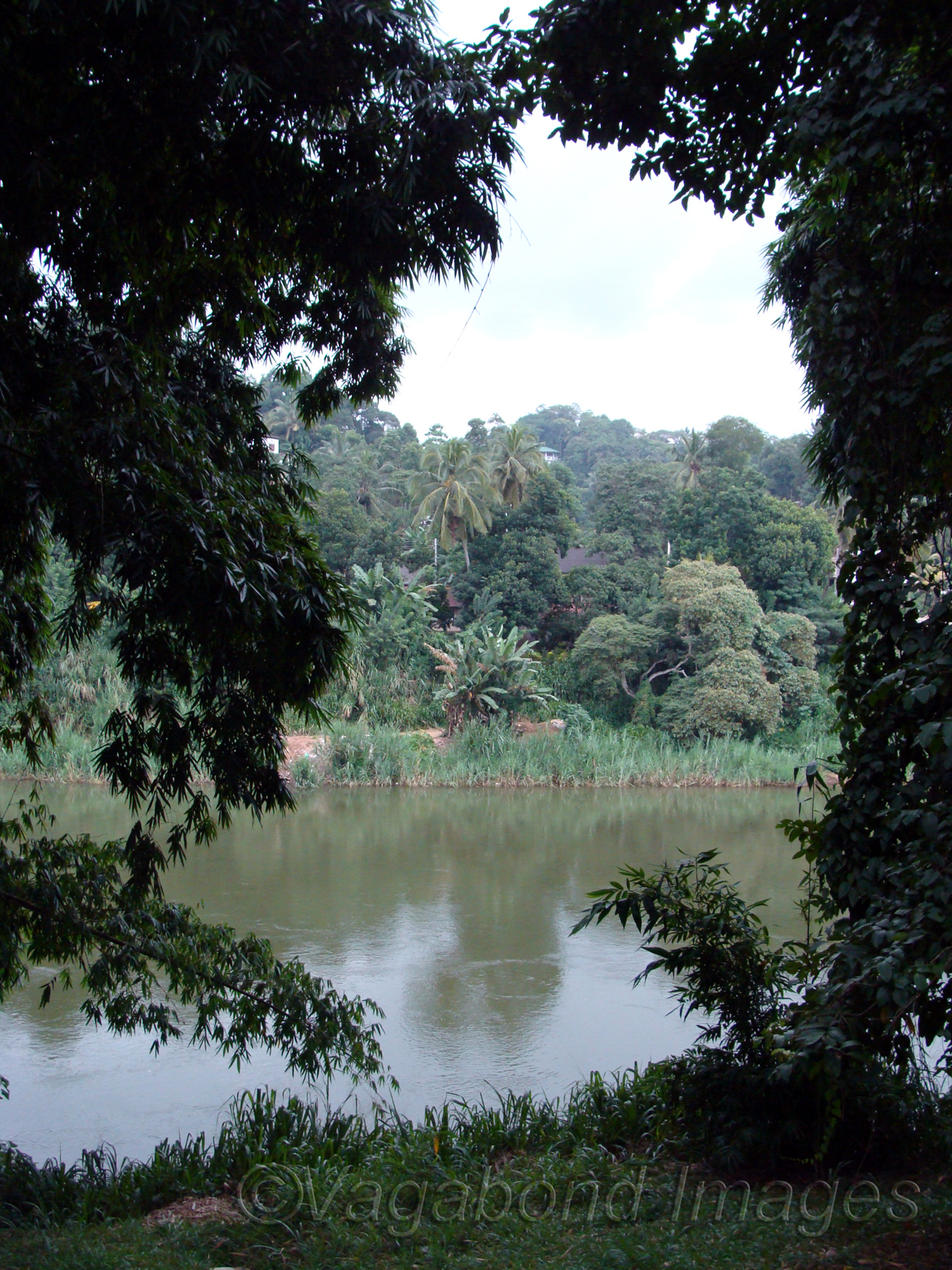 Water bodies add up to the setting