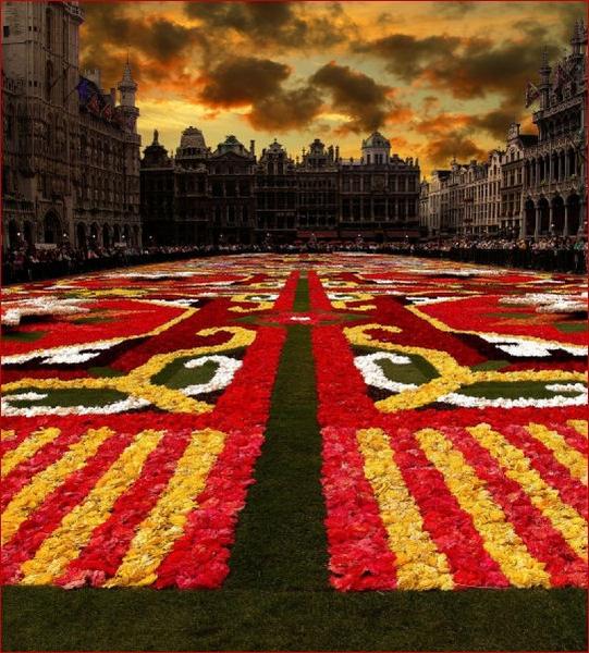 Carpet in 2008