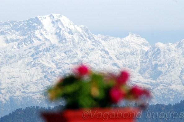 Beauty & the peak