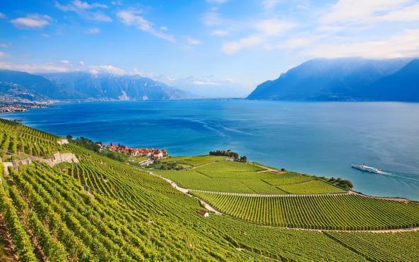 european-wine-region