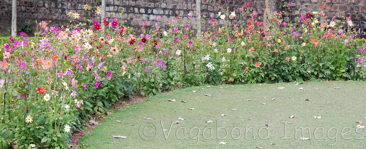 Neatly carved garden at eastern group