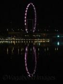View at night!