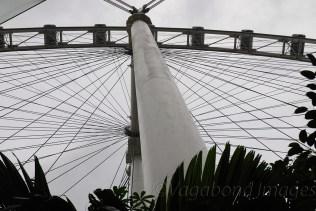 Singapore Flyer18