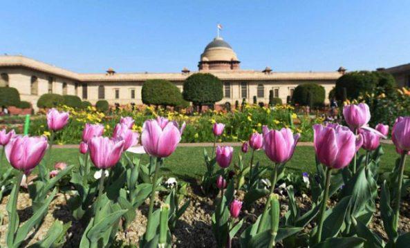 mughal-garden