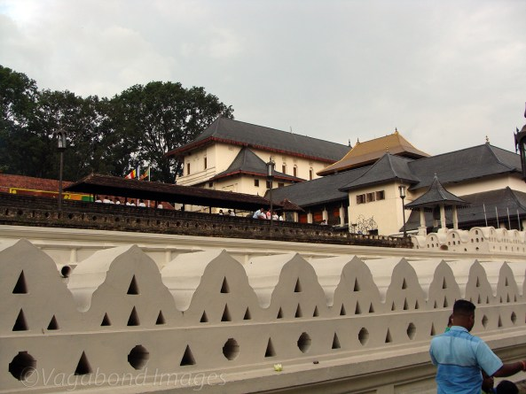 Tooth Relic2