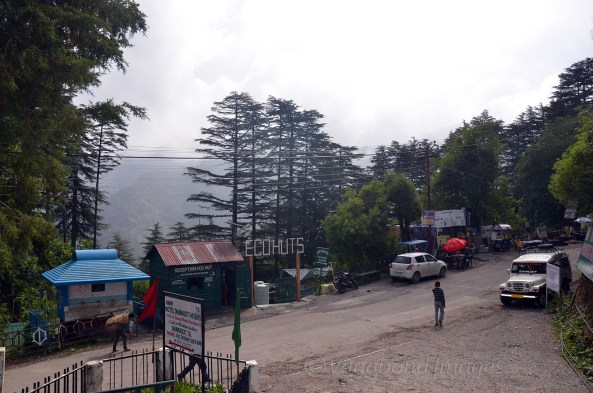 Eco huts right in front of the GMVN rest house- Dhanaulti Heights