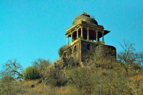 This Canatoph on the hilltop adjacent to ruins is said to be in memory of the black magician who cursed Bhangarh.