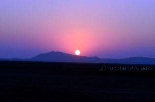 Pink Sunset6