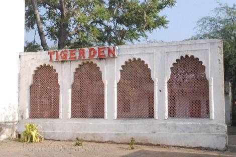 Tiger Den10