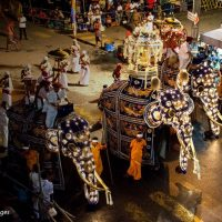 This full moon experience the Kandy Esala Perahera