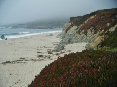 Monterey, California coast
