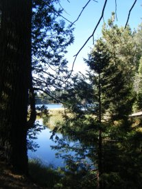 Sequoia Lake