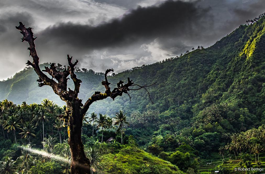 dramatic scenes of Bali during the rainy season