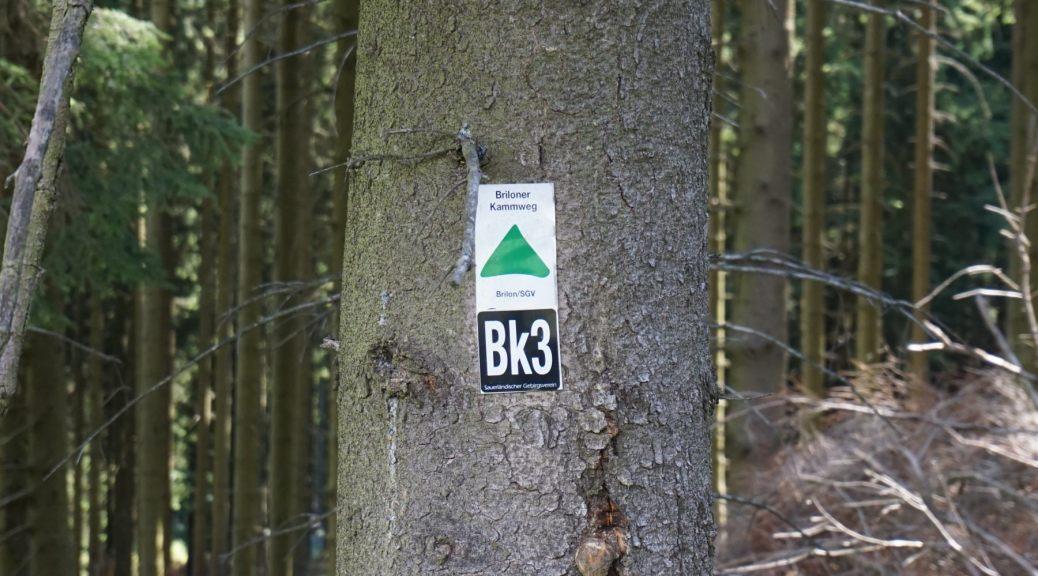 Briloner Kammweg