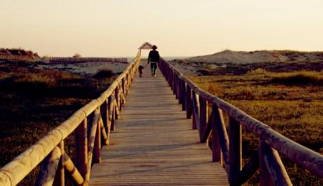 Acceso a la playa en Zahara de los Atunes