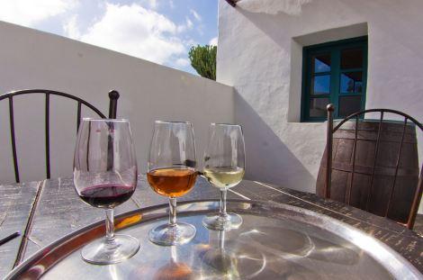 Cata de vinos en las bodegas El Grifo