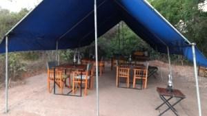 Campamento Big Game en el parque natural de Wilpattu